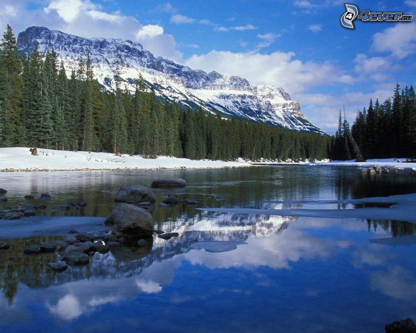 Bow River, bosque, montañas nevadas, Alberta, Canadá