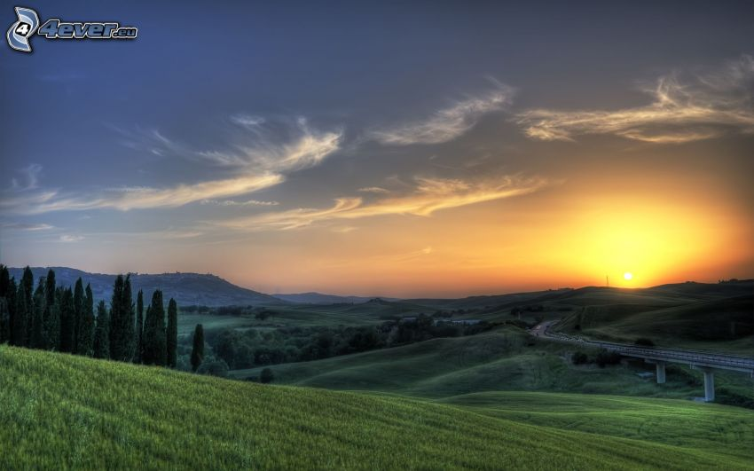 campo, carretera, puesta del sol