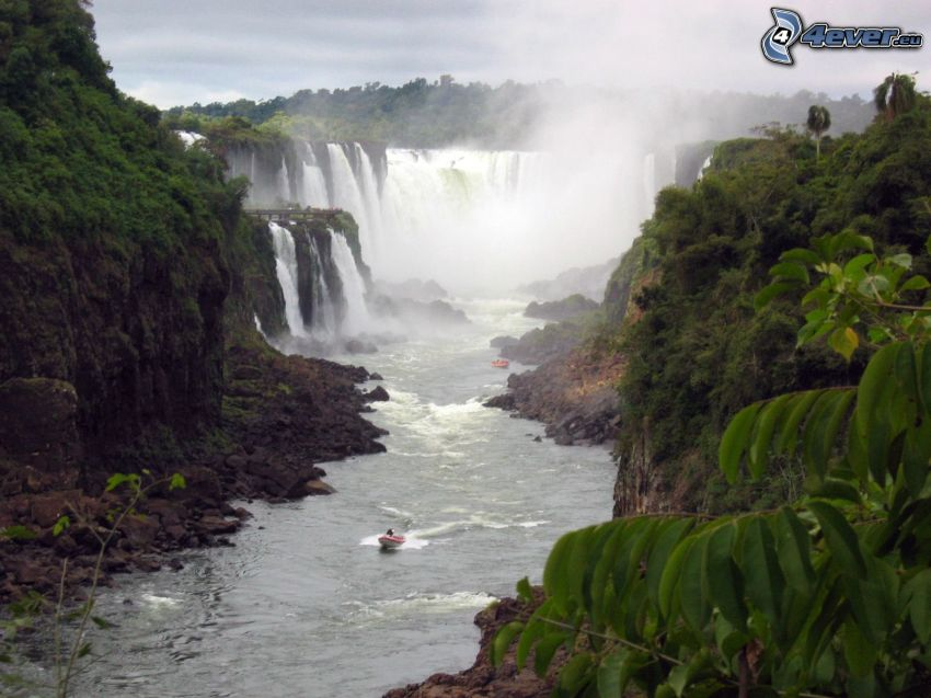 cascadas, selva, río, barco