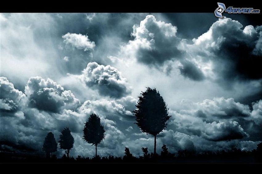 cielo oscuro, líneas de árboles, nubes