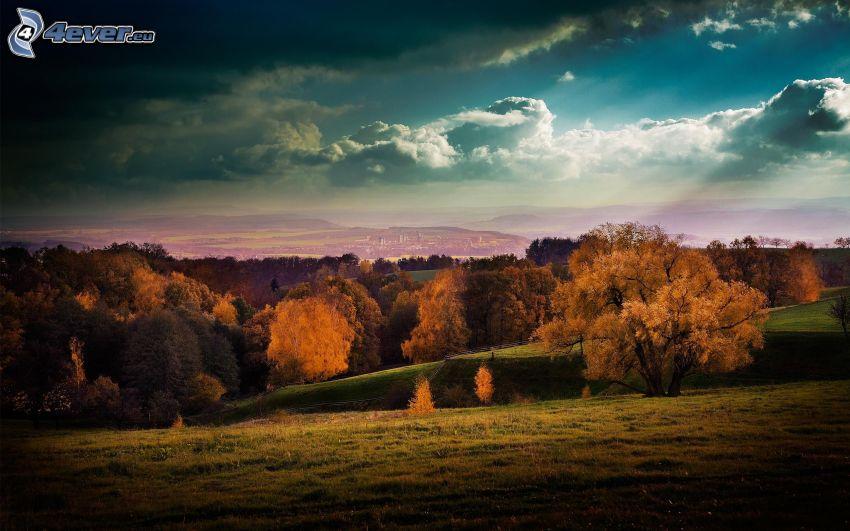 colinas en otoño, hojas amarillas, prado, ciudad