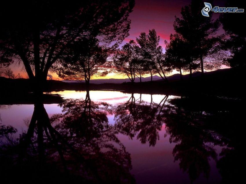 crepúsculo, lago, después de la puesta del sol, siluetas de los árboles, reflejo