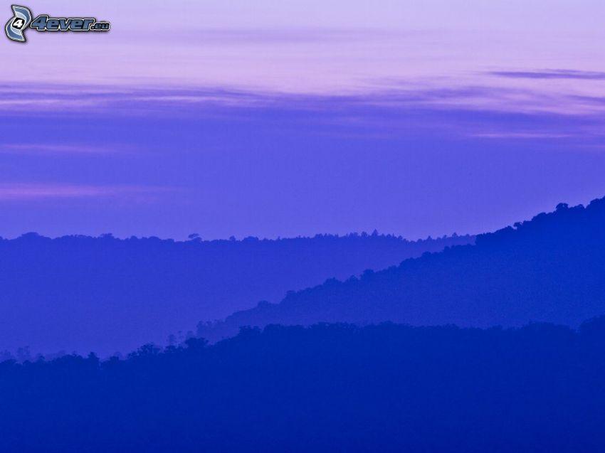 horizonte, cielo púrpura