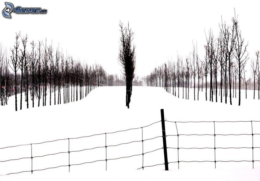 huerta, nieve, alambre de la cerca