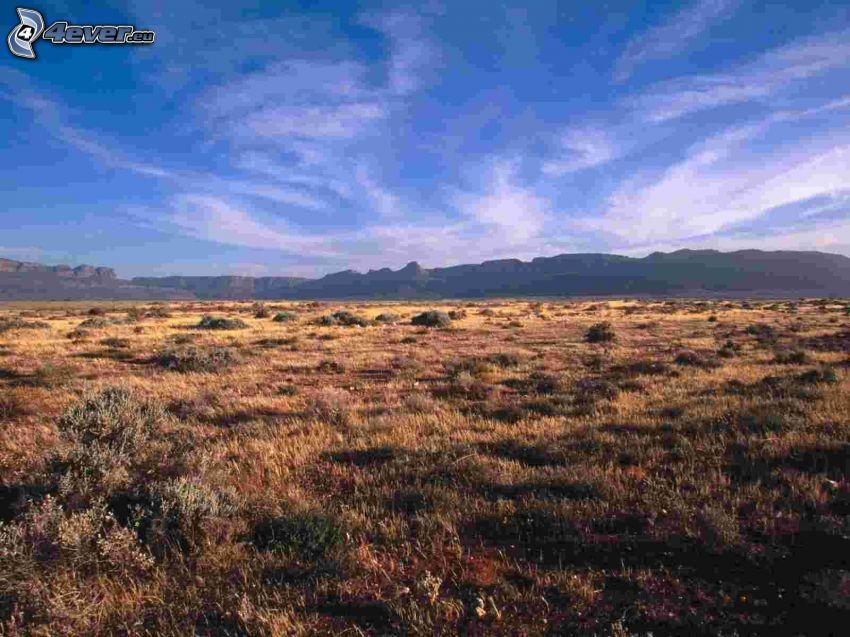Karoo National Park, sierra, nubes, prado