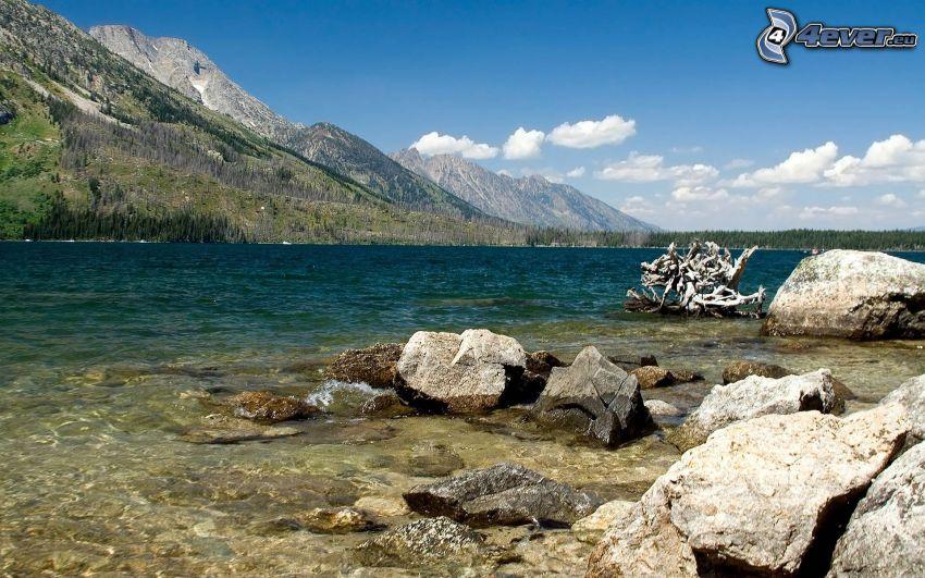 lago, agua verde, montañas, Canadá