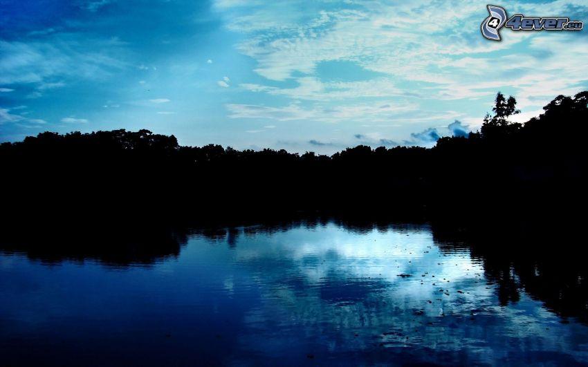 lago, árboles, atardecer