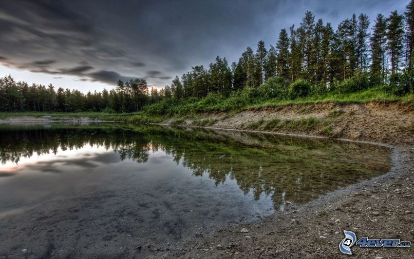 lago, árboles, reflejo, HDR