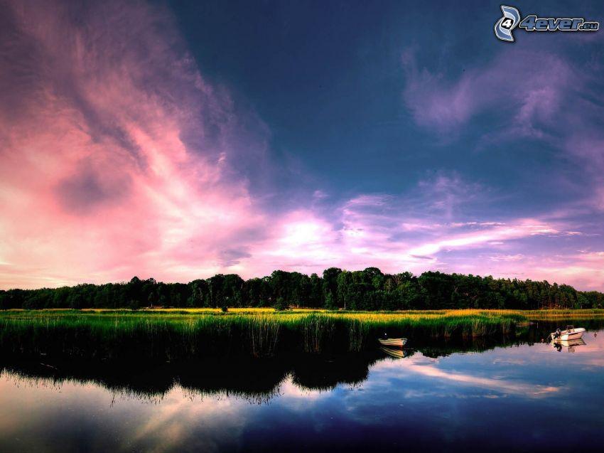 lago, barcos, árboles, reflejo