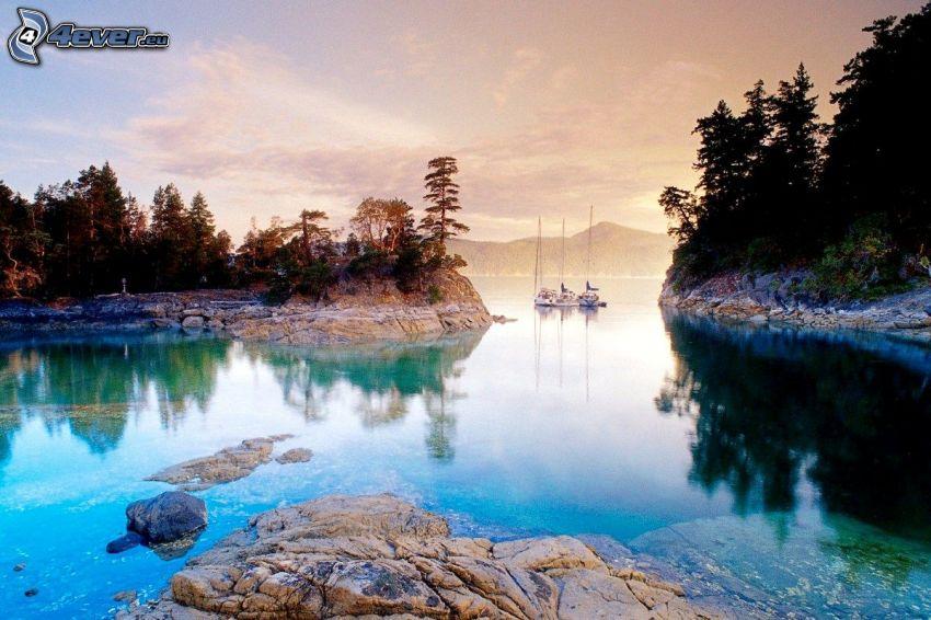 lago, bosques de coníferas, yates