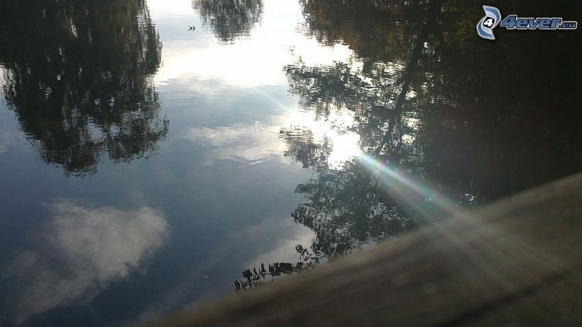 lago, reflejo