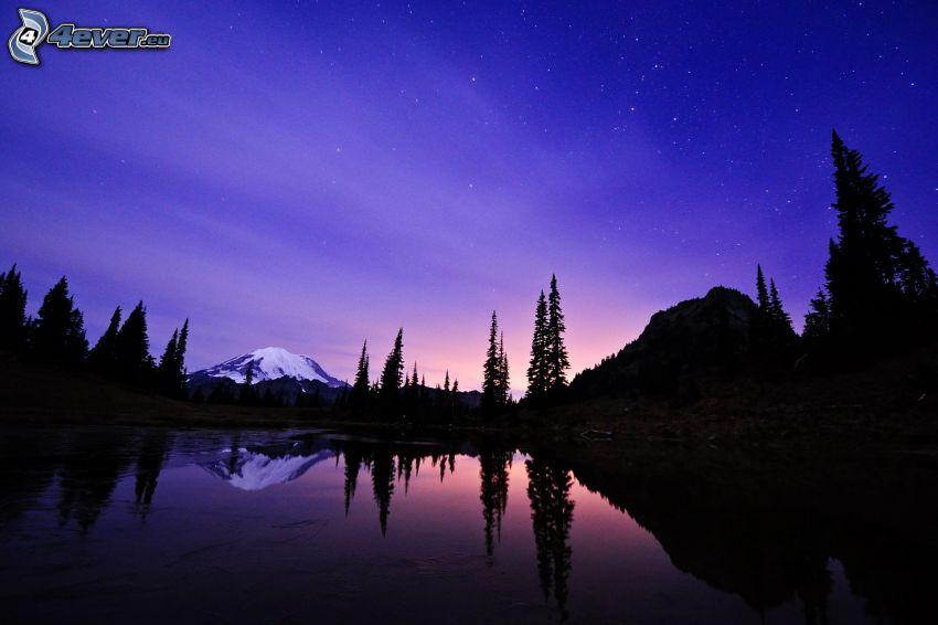 lago, siluetas de los árboles, cerro nevado, atardecer, cielo estrellado