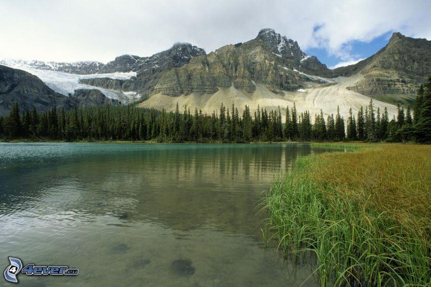 Lago en el bosque, montaña rocosa, Alberta, Canadá, Colombia Británica