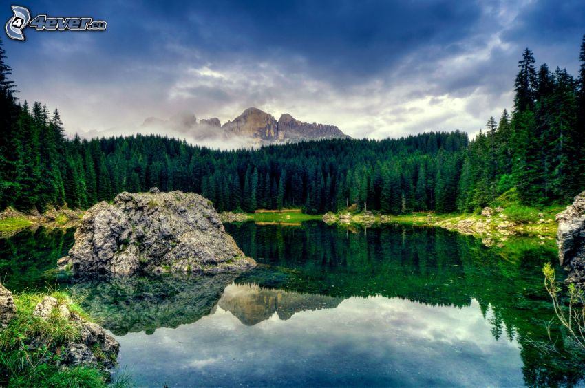 Lago en el bosque, reflejo, montaña