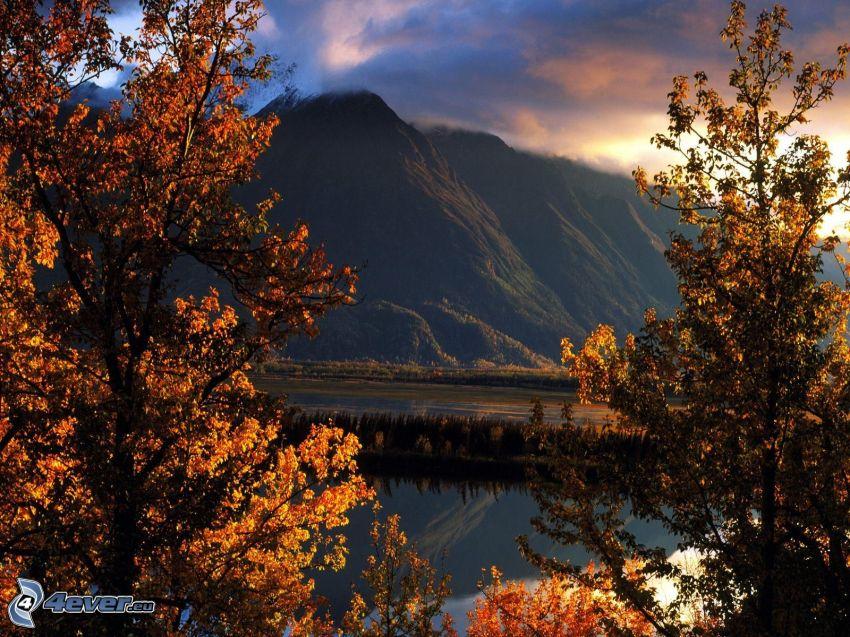 Matanuska Valley, Alaska, árboles amarillos, colina, lago