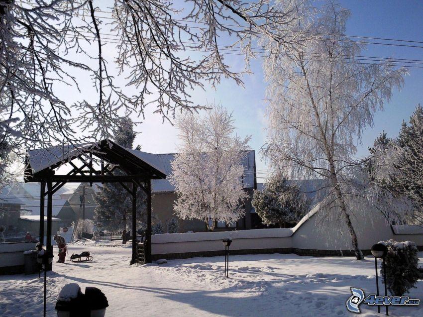 nieve, trineo