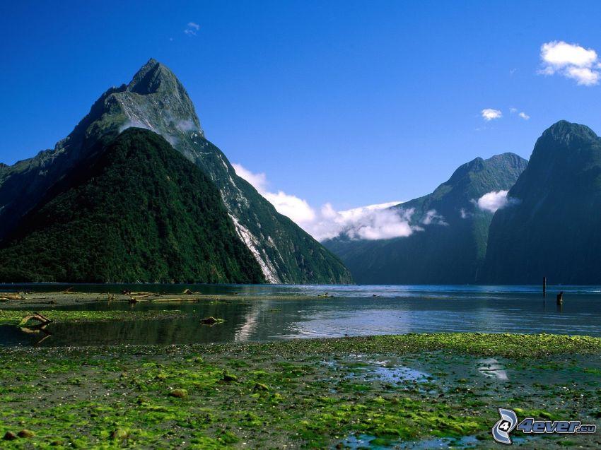 Nueva Zelanda, colina, lago