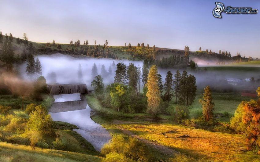 paisaje, río, árboles, vapor