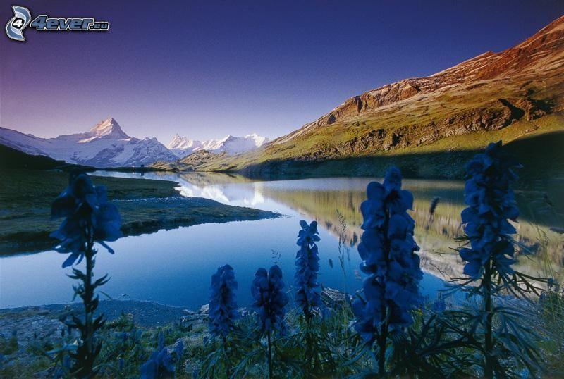 paisaje, río, colina