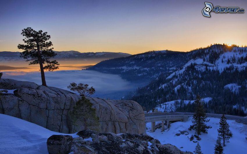 paisaje de invierno, después de la puesta del sol, árbol en una roca, camino, nieve, inversión térmica, bosques de coníferas