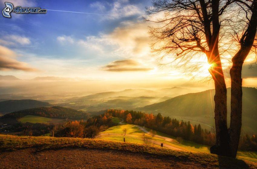 paisaje de otoño, colinas en otoño, árbol, puesta de sol en las montañas