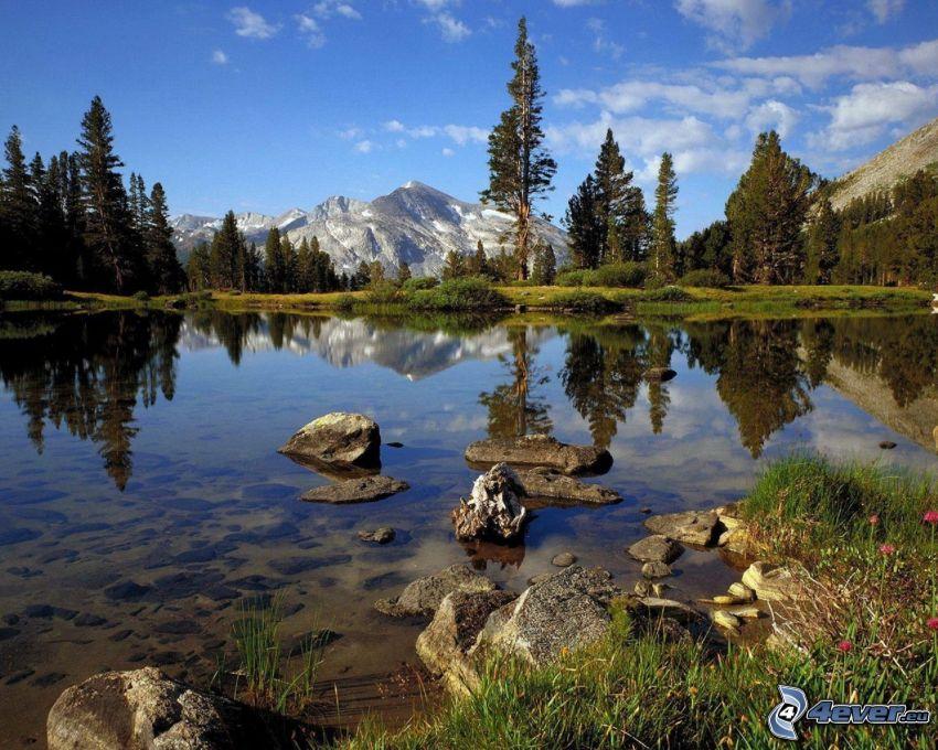 Parque nacional de Yosemite, lago, montañas, árboles