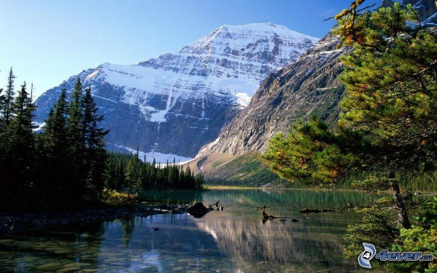 Parque Nacional Jasper, montaña rocosa, bosques de coníferas, río, nivel de aguas tranquilas, lago