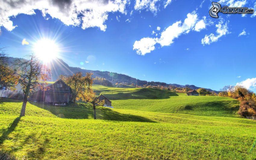 prado verde, sol, hierba, árboles otoñales, casas, nubes