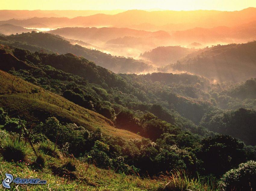 puesta de sol en las montañas, colina, bosque