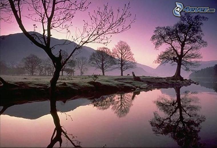 puesta de sol púrpura, siluetas de los árboles, agua