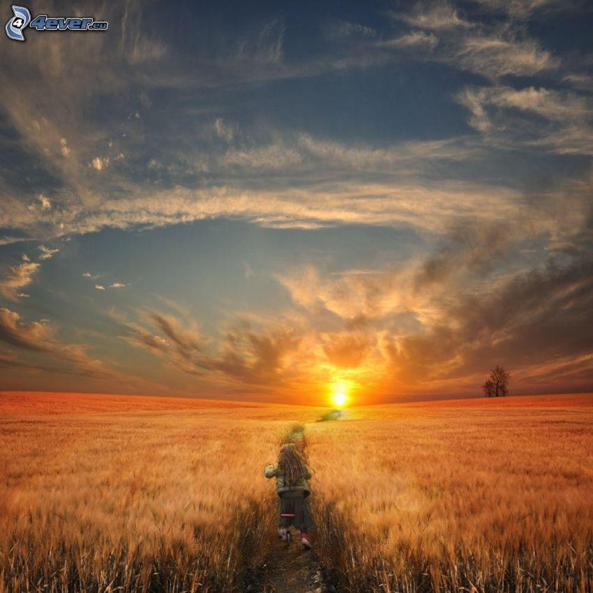 puesta de sol sobre el campo, acera, turista