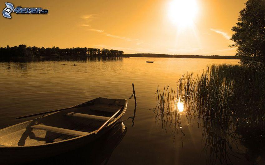 puesta de sol sobre el lago, barco, árboles, naturaleza