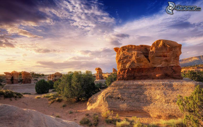 puesta del sol, rocas, desierto, árboles