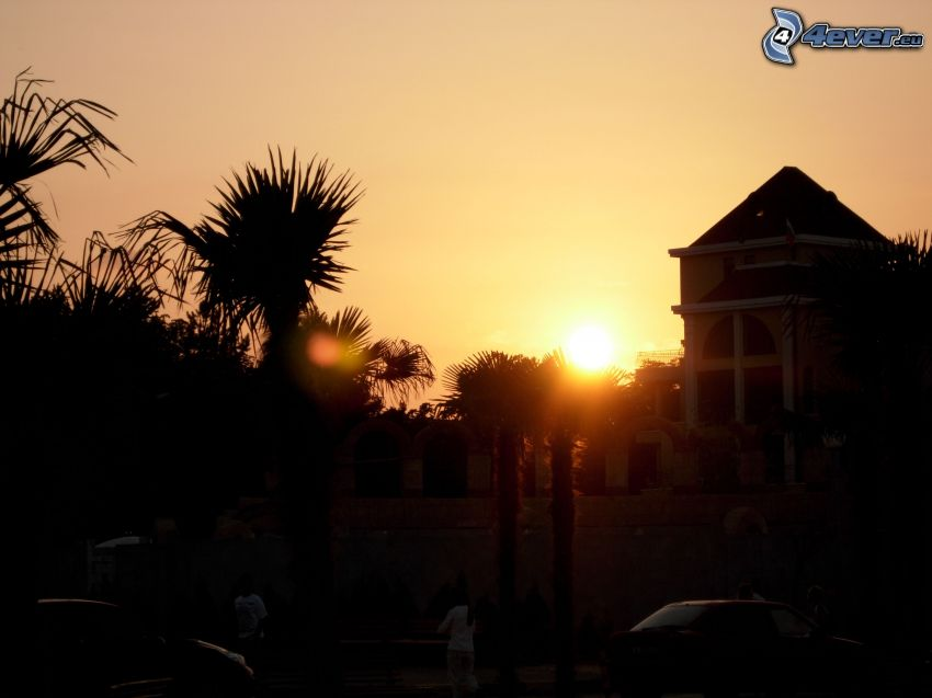 puesta del sol, siluetas, vacaciones