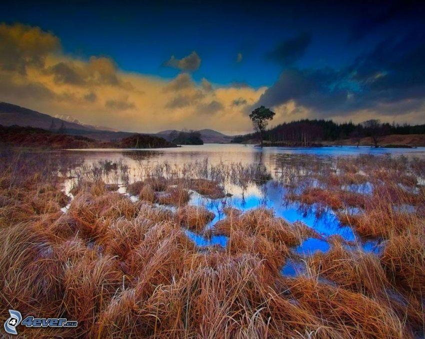 río, hierba seca, cielo