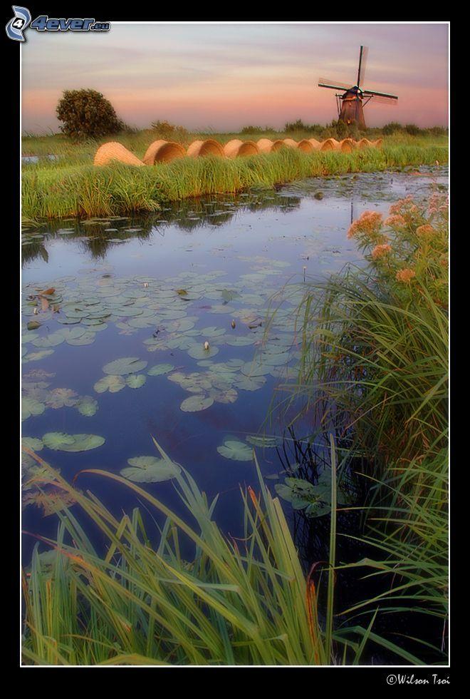 río, molino de viento, heno, Países Bajos