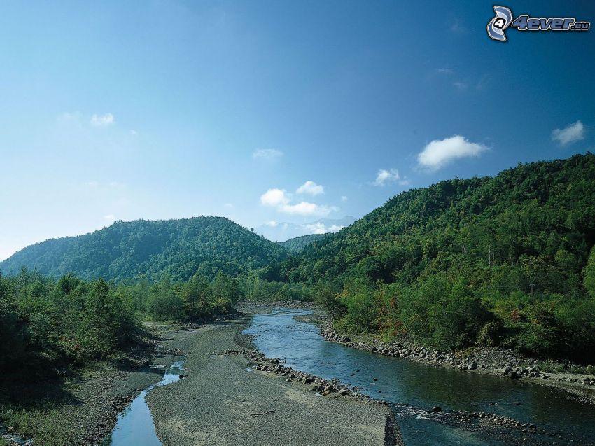 río en el bosque, grava