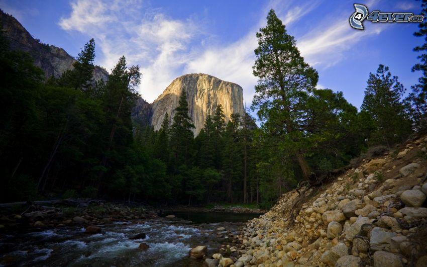 Río en el Parque Nacional de Yosemite, El Capitan, corriente, árboles coníferos, montaña rocosa, piedras