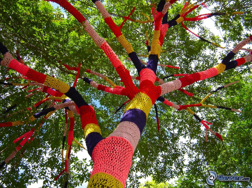 árbol de colores, ropa