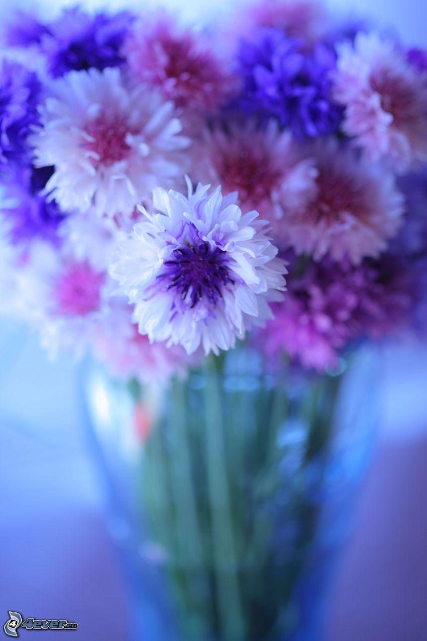 flores en un florero