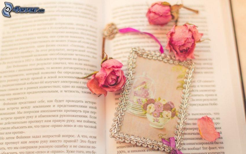 flores secas, rosas, dibujo, libro
