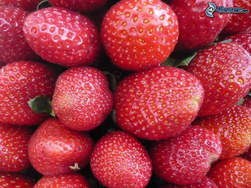 fresas, fruta