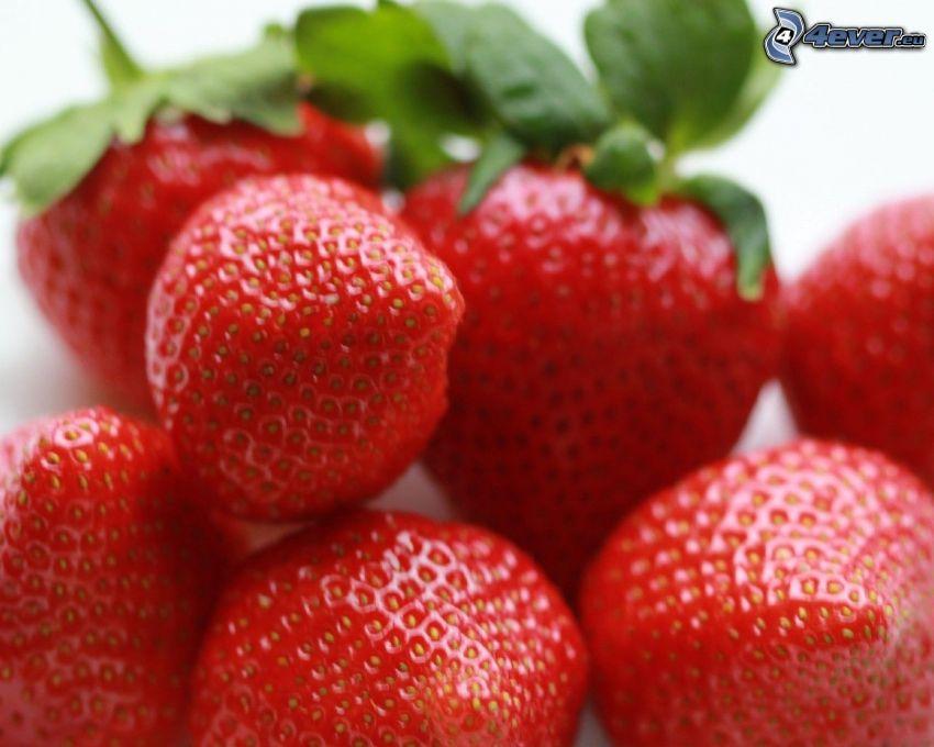fresas, macro