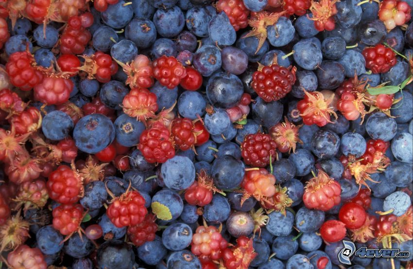 fruto forestal, frambuesas, arándanos