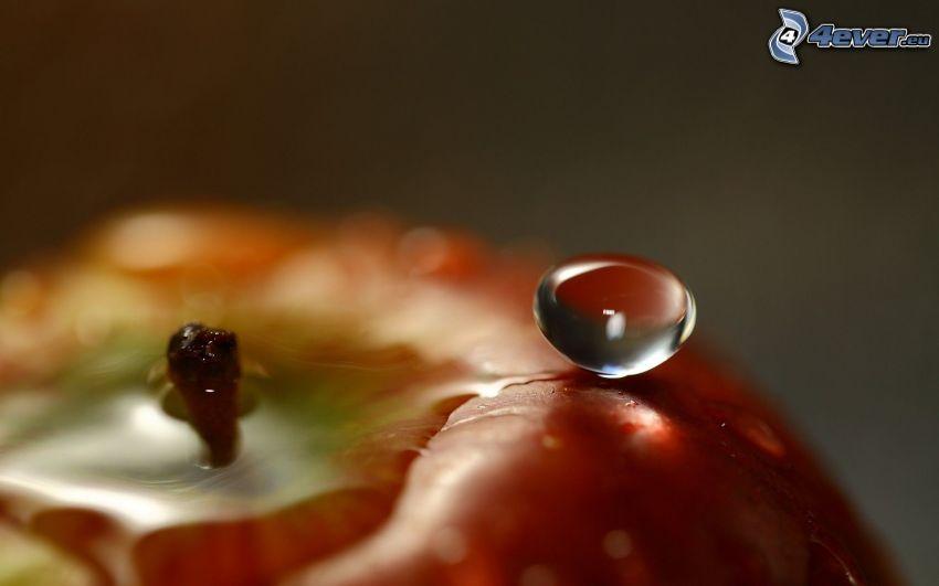 gota de agua, manzana