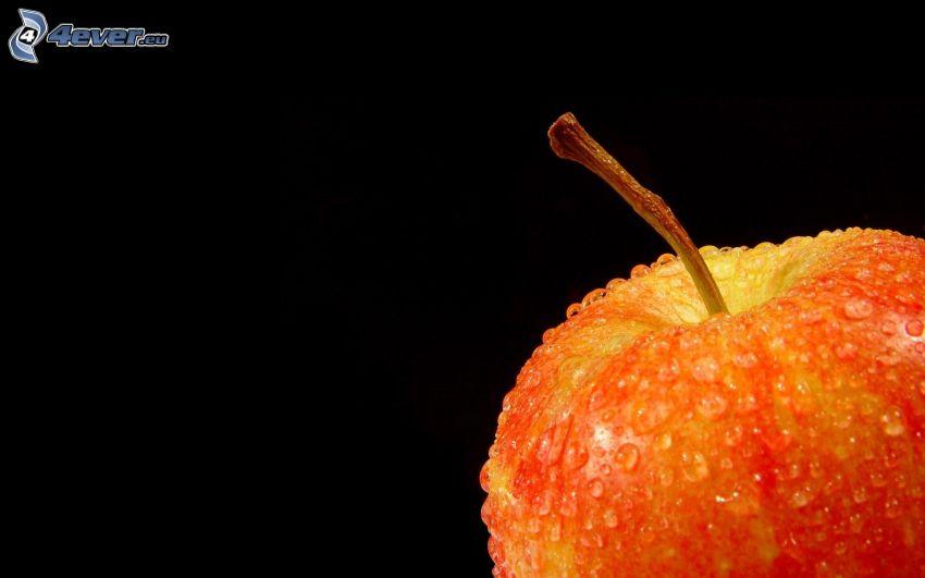 manzana roja, gotas de agua