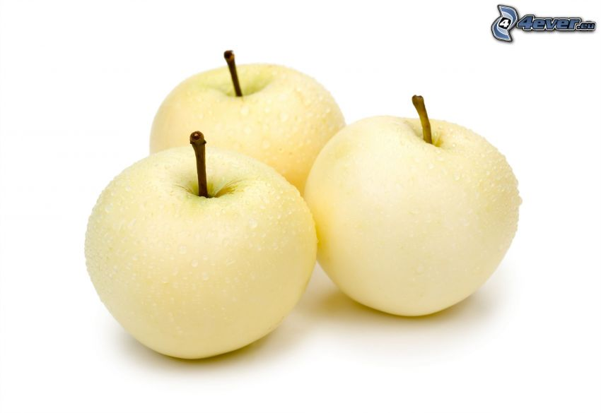 manzanas, rocío