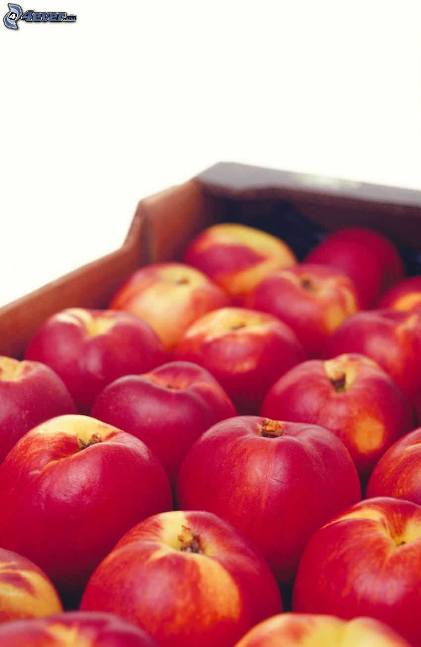 manzanas rojas en cajas