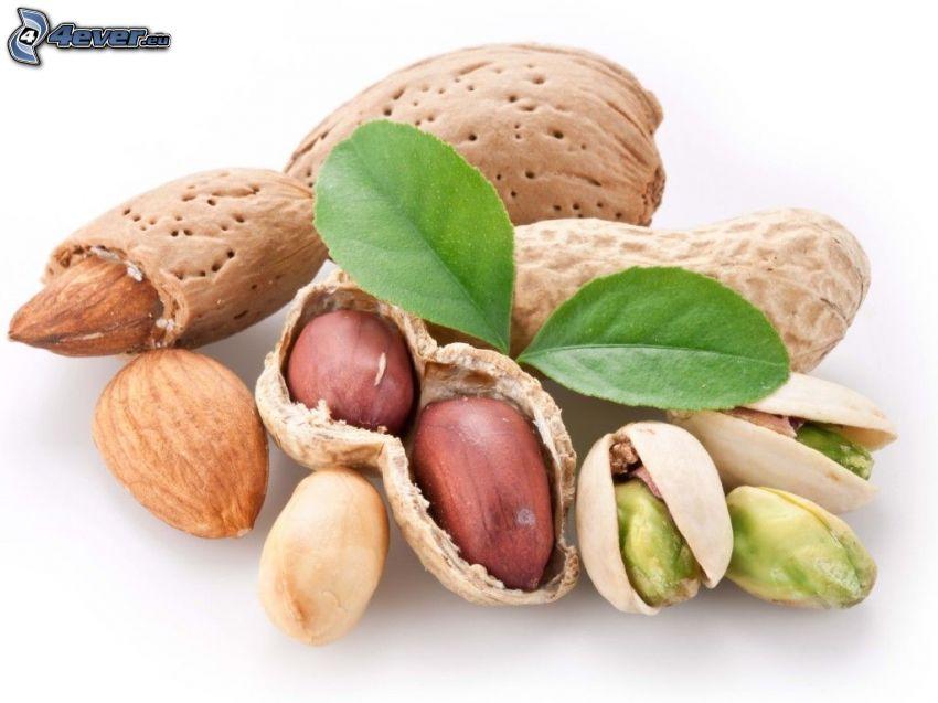 nueces, pistachos, almendras, cacahuates
