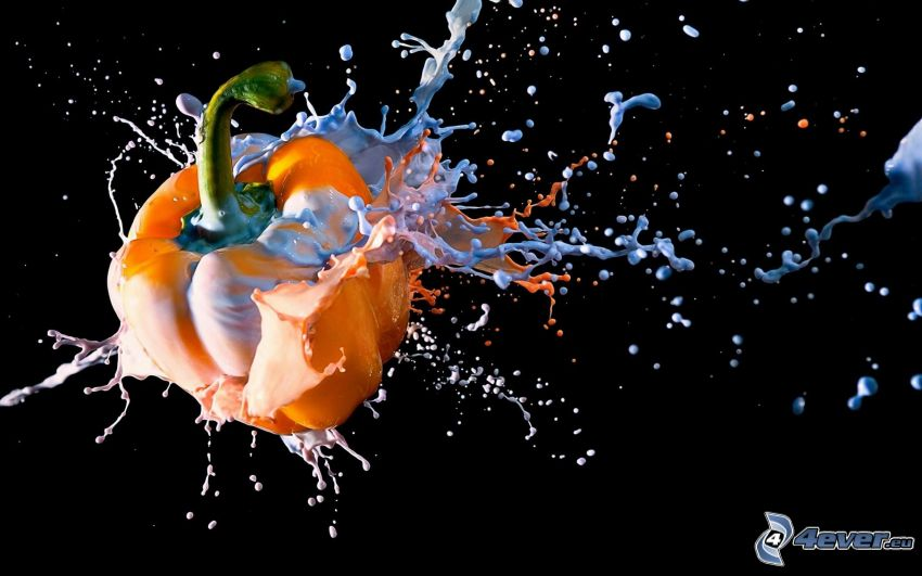 pimienta, splash